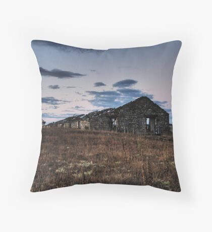 The Shed Throw Pillow