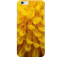 Sunny D.  iPhone Case/Skin