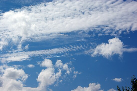 Fishbone Cloud by MarianaEwa