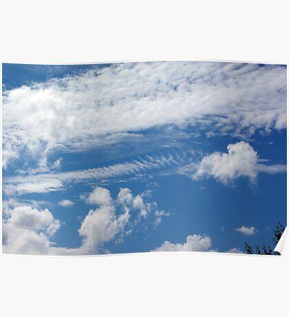 Fishbone Cloud Poster