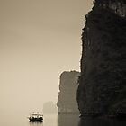 Floating at Halong by Steven Johnson