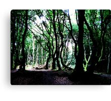 The Forest Of The Trolls Canvas Print