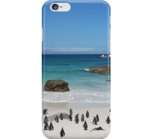 Penguins on the Beach iPhone Case/Skin