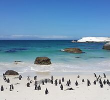 Penguins on the Beach by franceslewis