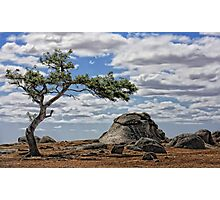 Dog Rocks Batesford, Victoria Photographic Print