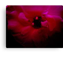 Red Flower. Canvas Print