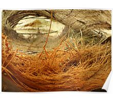 Coconut pillow Poster