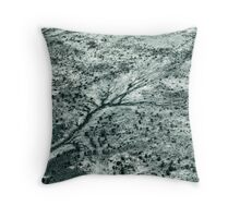 dry river Throw Pillow