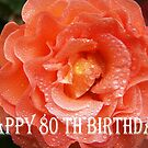 80th Birthday Rose by Coloursofnature