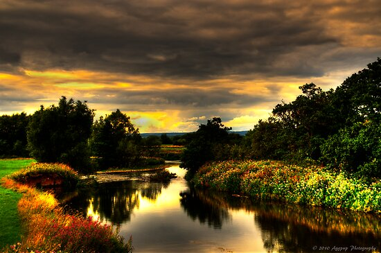River Dove by David J Knight