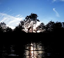Summer sunset glinting through the trees on Lake Windemere  by Hugh Mitchell