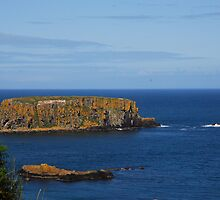 The beautiful coast of Northern Ireland by julie08