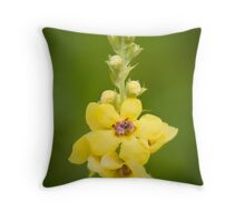 The First Blooms Throw Pillow