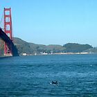 Surfer and the Golden Gate Bridge by ceemoon
