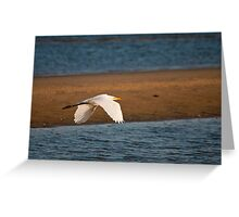 Egret flying along West Meadow Beach at sunset Greeting Card