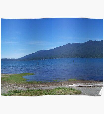 Lake Quinault  Poster