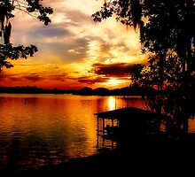 Lake Blackshear Sunset by Janie Oliver
