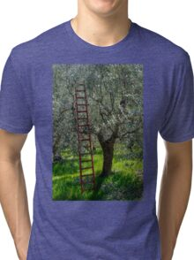 Red Ladder, olive pruning, Acquedotto Romano, Spello, Umbria, Italy Tri-blend T-Shirt