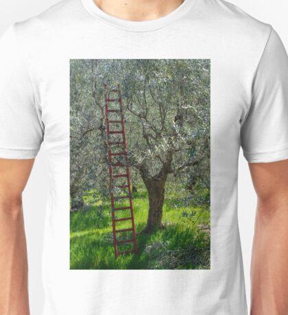 Red Ladder, olive pruning, Acquedotto Romano, Spello, Umbria, Italy Unisex T-Shirt