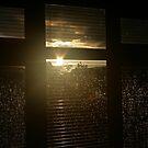 Sunshine after the rain by David Devine