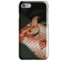 Hidden Beauty iPhone Case/Skin