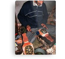 Bellows Tortoise Shell. Metal Print