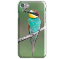 European bee-eater with insect prey iPhone Case/Skin