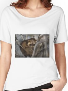 Raccoon in Tree Women's Relaxed Fit T-Shirt