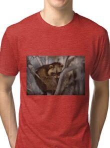 Raccoon in Tree Tri-blend T-Shirt