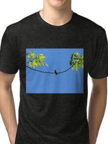 Perched Hummer Tri-blend T-Shirt