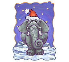 Elephant Christmas Photographic Print