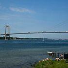 Bridges in Denmark - Little Belt Bridge by imagic