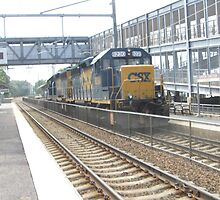 6230 Double engine Freight Train by Eric Sanford
