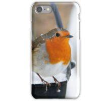 Robin in snowscene iPhone Case/Skin