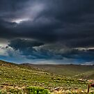 Brewing Storm by Phillip M. Burrow