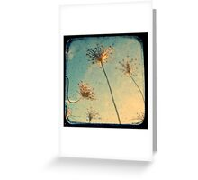 Reach for the Sky - TTV Greeting Card