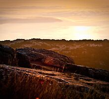 Sunrise on Cadillac Mountain by Halie Hovenga