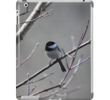 Feathered Companion iPad Case/Skin