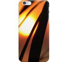 Macro Sunset iPhone Case/Skin