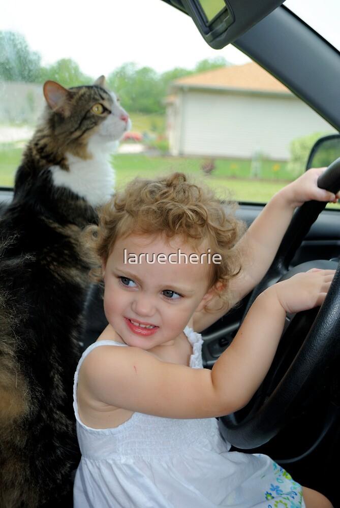 Taking Kitty for a Drive  by laruecherie