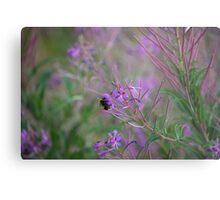 Bumble Bee on pink Flowers Metal Print