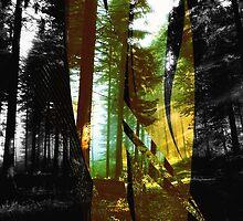 Illumination by boomerfreak1