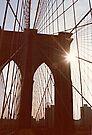 Brooklyn Bridge Web by John Carpenter