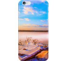 Winter landscape near a pond iPhone Case/Skin