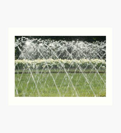 White Hydrangea behind the water screen  Art Print