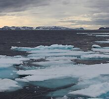Nordkappsundet - Arctic Ice Field by John Dalkin