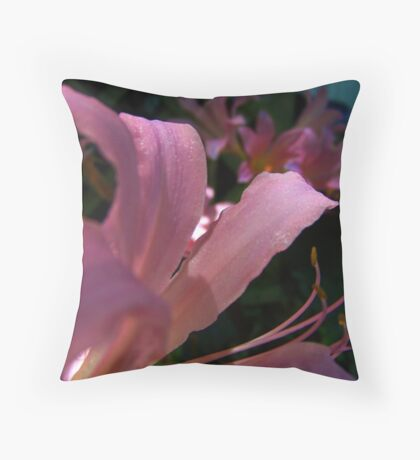 Day Lilies At Dark Throw Pillow