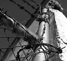 Beautiful Keswick- Barbed Wire by Ben Loveday