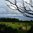 Green Island, Taidong by Digby