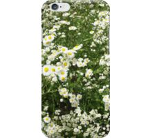 Large field overgrown with small white daisy flower iPhone Case/Skin